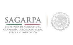 Propuesta Regla de Operación 2017