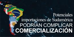 Potenciales Importaciones de Sudamérica podrían Complicar Comercialización