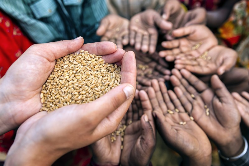 Empeora crisis alimentaria en 2020