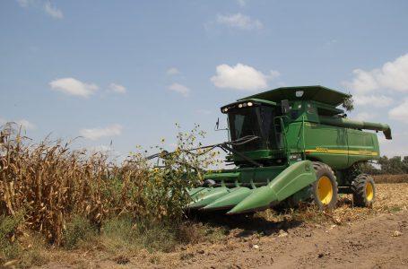 Brinda EU soporte al precio de maíz