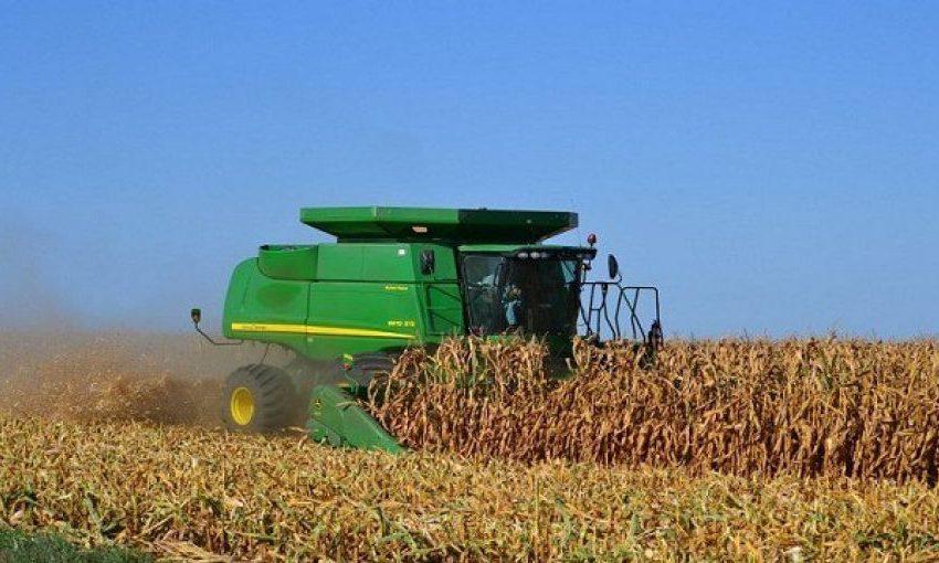 Recomendaciones AARC para una grata cosecha de maíz 2021
