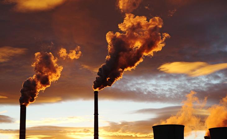 Cerca del 40 por ciento de los alimentos se desperdician, generando el 10 por ciento de las emisiones de gases de efecto invernadero : WWF y TESCO