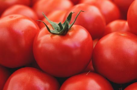 Produciría más tomate México en 2022