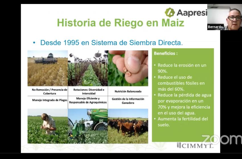 Más sustentable, más rendimientos en maíz : Experiencias Argentinas de Siembra Directa en el Verano AARC 2021