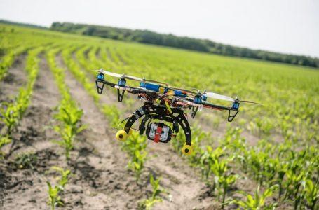 La tecnología agrícola para reducir la pobreza