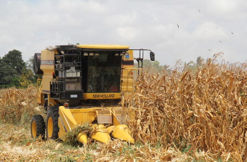 Elevarán Fertilizantes costos de producción