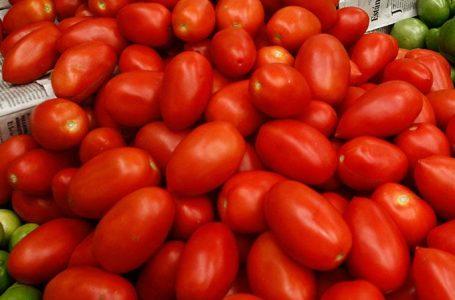 Sigue presionando Florida las importaciones de tomate mexicano